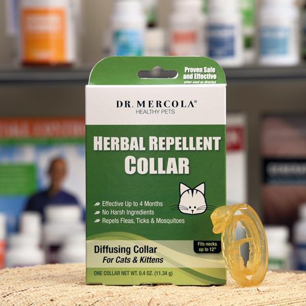 Collar Repelente Herbal para Gatos y Gatitos