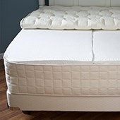 Organic Twin Mattress (Plush) - Latex Free