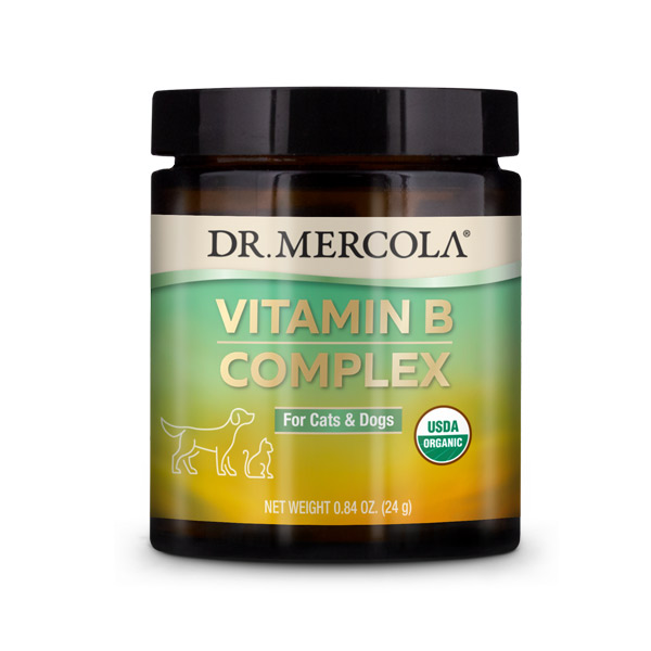 Vitamin B Complex for Pets
