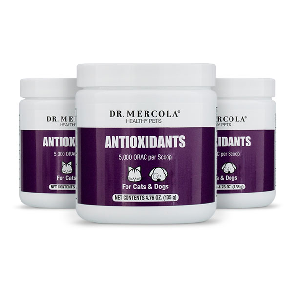 Antioxidants for Cats & Dogs (4.76 oz. per Container): 3 Containers