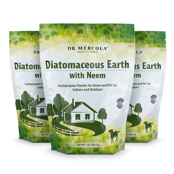 Diatomaceous Earth (1lb. bag): 3-Pack