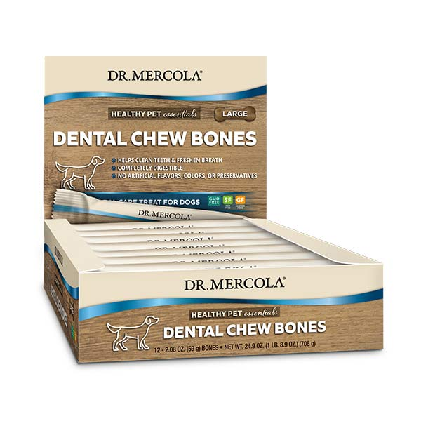 Dental Chew Bones Large 1 Box