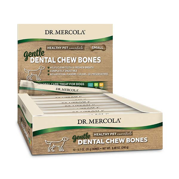 Gentle Dental Chew Bones Small (12 bones per box): 1 Box