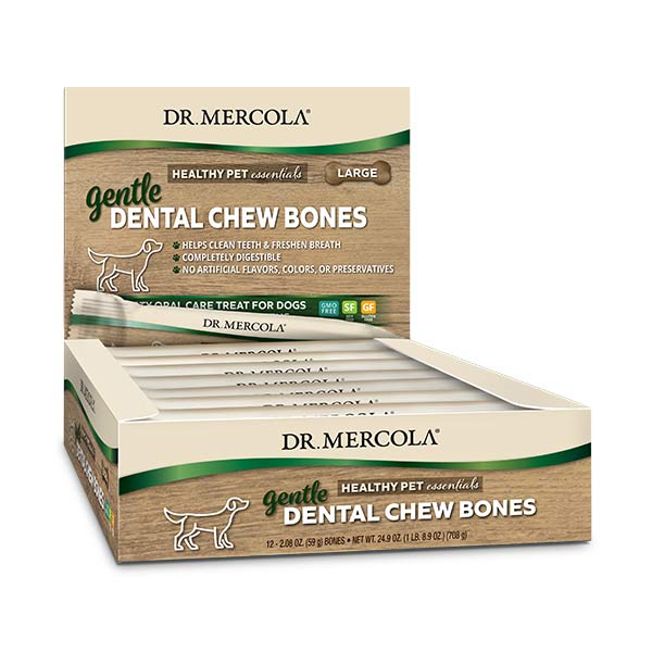 Gentle Dental Chew Bones Large (12 bones per box): 1 Box