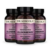 Organic Fermented Elderberry