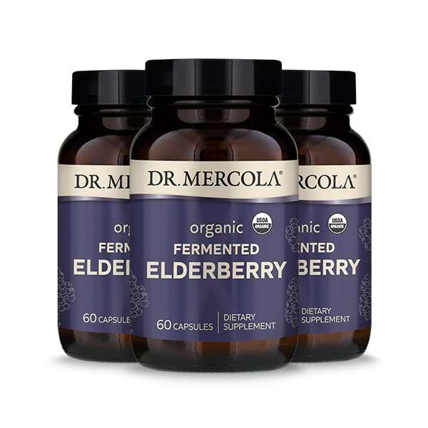 Organic Fermented Elderberry (60 per bottle): 90 Day Supply