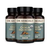 Organic Chaga Mushroom