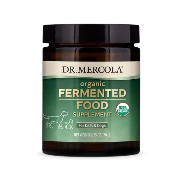 Organic Fermented Food for Cats & Dogs (2.75 oz. per container): 1 Container