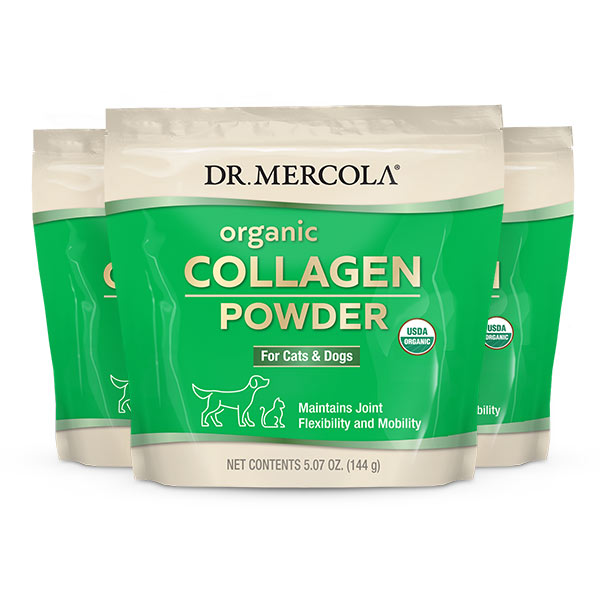 Organic Collagen Powder for Cats & Dogs