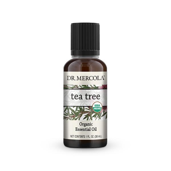 Organic Tea Tree Essential Oil (1 oz.): 1 Bottle
