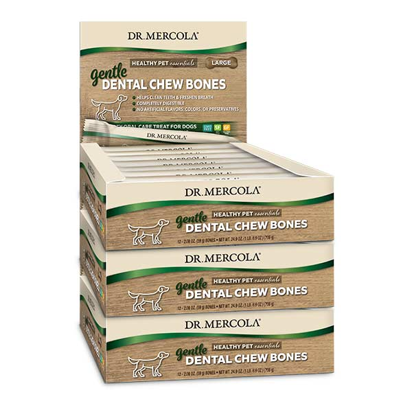 Gentle Dental Chew Bones Large