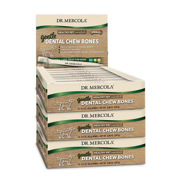 Gentle Dental Chew Bones Small (12 bones per box): 3-Pack