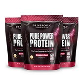 Pure Power Protein - Strawberry (22 Servings): 3-Pack