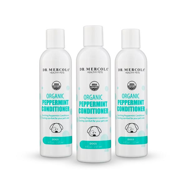 Organic Peppermint Conditioner for Dogs 3-Pack