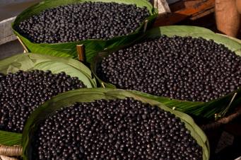 antioxidants, acai, superfood, shopping, free radicals, ORAC