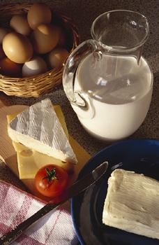 cholesterol, milk, eggs, cheese, butter