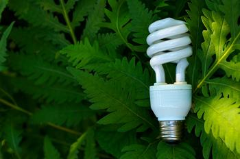 Home depot, recycling, CFL, compact fluorescent bulbs, LED, light bulbs, incandescent bulbs