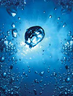 deuterium and carbon-13