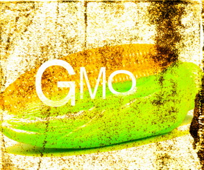 gm, gmo, jeffrey smith