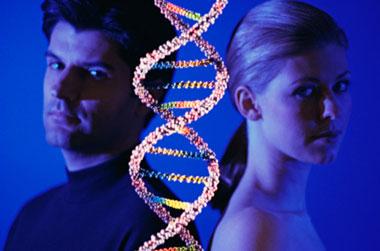 epigenetics, DNA