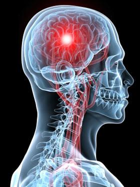 brain blood flow
