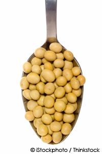 soy is not effective for bone loss and hot flashes
