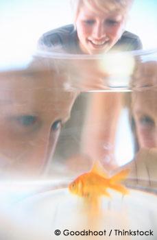 Family Looking at Pet Fish Bowl