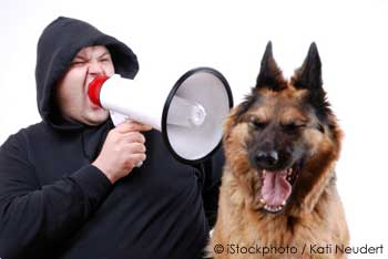 Man Shouting at His Pet Dog