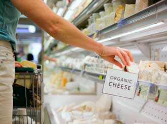 Shopping for Organic Cheese