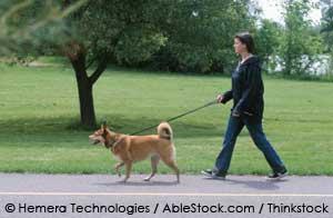 pet health problems