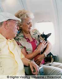 flight guideline for pets