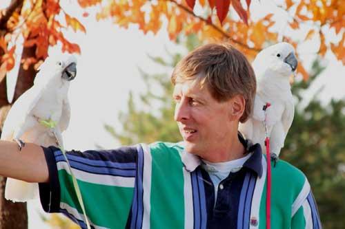 pet birds' safety