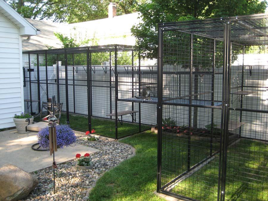 Gallery For Outdoor Cat Window Enclosures