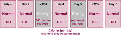What Type of Intermittent Fasting Program is Best?