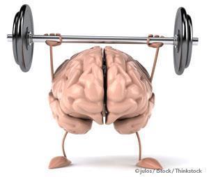두뇌 향상