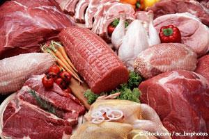 Você Está Sabotando sua Saúde e Longevidade Com o Consumo Excessivo de Proteína?