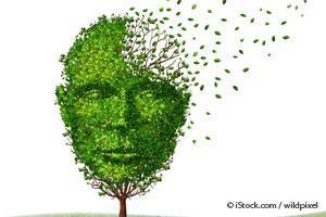 運動が脳の認知機能と脳細胞の再生にもたらす注目すべき効果