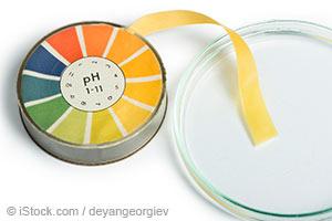培养皿与 PH 试纸组合
