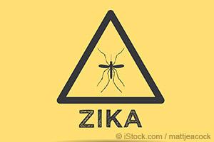 지카 바이러스 박멸을 위해 인공 모기 배치