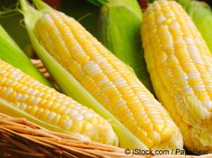 トウモロコシの栄養情報
