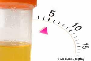 Как предупредить и лечить проблемы с почками с помощью питания