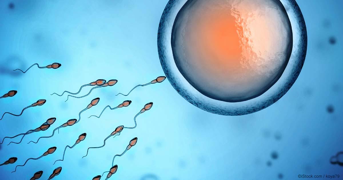 Какие лекарства влияют на сперматозоидов
