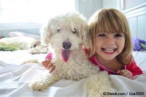 Les chiens sont excellents, mais d'autres animaux de compagnie sont aussi de très bonnes armes contre l'anxiété