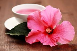 Chá de Hibisco: Um Elixir Relaxante