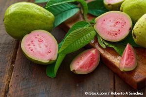 구아바 과일