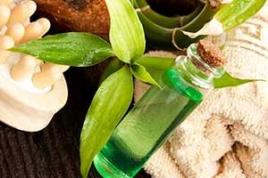 티트리 오일(Tea tree oil): 티트리의 대표적인 세 가지 기능