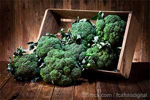 브로콜리가 만성 건강질환을 줄여 노화관련 감퇴를 늦추고 장수를 촉진할 수 있습니다.