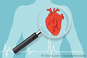 11 Fatos Fascinantes Sobre o Coração Humano