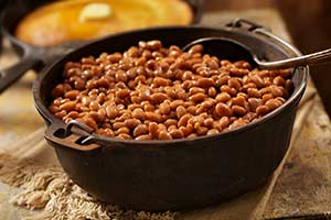 O Caso Contra o Feijão e Outros Alimentos Contendo Lectinas Tóxicas
