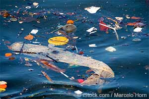 Пластиковые отходы в океане
